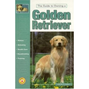 Guide to Owning a Golden Retriever (Re Dog)