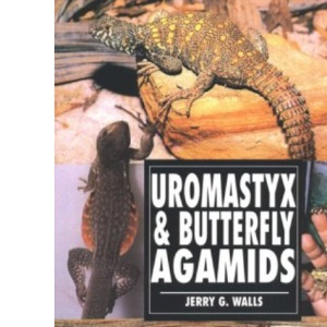 Uromastyx and Butterfly Agamids (Herpetology series)
