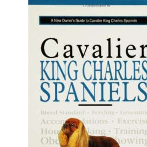 A New Owner's Guide to Cavalier King Charles Spaniels