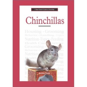 A New Owner's Guide to Chinchillas