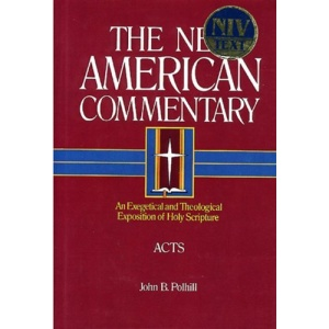 NAC NT ACTS (The New American commentary)
