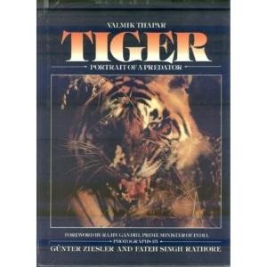 Tiger: Portrait of a Predator
