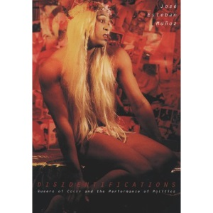 Disidentifications: Queers of Color and the Performance of Politics (Cultural Studies of the Americas)