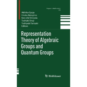 Representation Theory of Algebraic Groups and Quantum Groups: Preliminary Entry 520 (Progress in Mathematics)