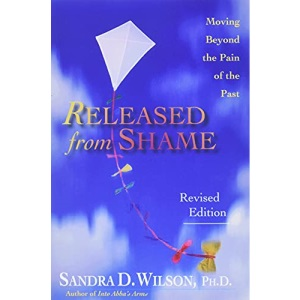 Released from Shame: Ministry in the Spirit According to Paul: Moving Beyond the Pain of the Past