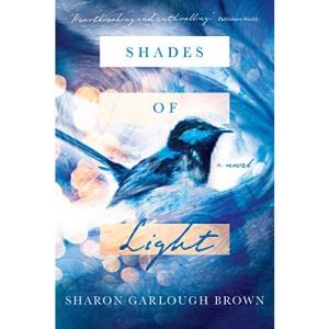Shades of Light: A Novel (Shades of Light Set)