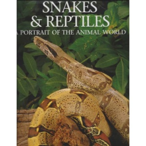 Snakes and Reptiles: A Portrait of the Animal World