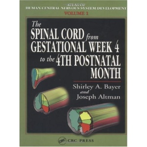 The Spinal Cord from Gestational Week 4 to the 4th Postnatal Month: v. I (Atlas of human central nervous system development)