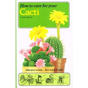 How to Care for Your Cacti (How to care for your houseplants)