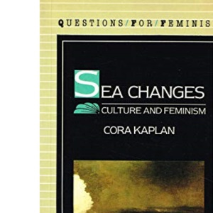 Sea Changes: Culture and Feminism (Questions for feminism)