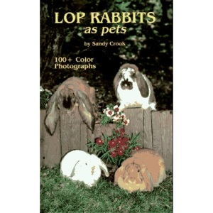 Lop Rabbits as Pets