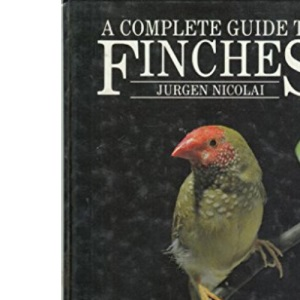 A Complete Guide to Finches