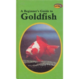 A Beginner's Guide to Goldfish