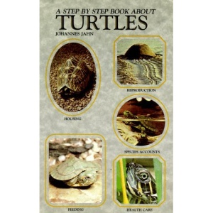 Step-by-step Book About Turtles