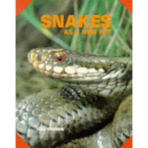 Snakes as a New Pet