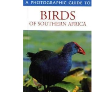 Southern African Birds: A Photographic Guide (Photographic Guides)