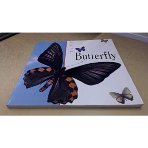 The Art of the Butterfly