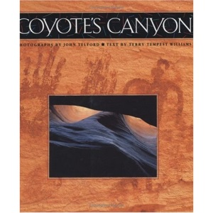 Coyote's Canyon
