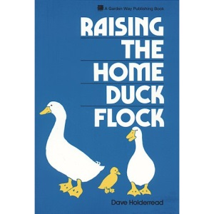 Raising the Home Duck Flock: A Complete Guide