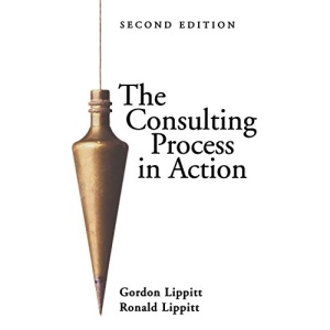 The Consulting Process in Action