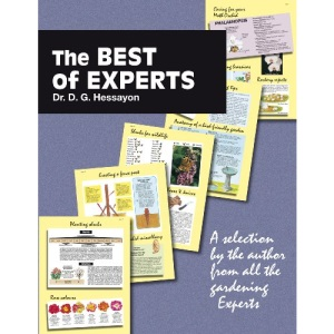 The Best of Experts