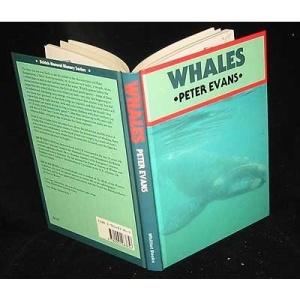 Whales (British Natural History Series)