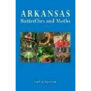 Arkansas Butterflies and Moths
