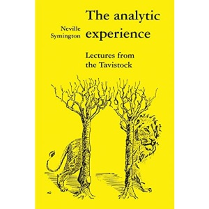 The Analytic Experience: Lectures from the Tavistock