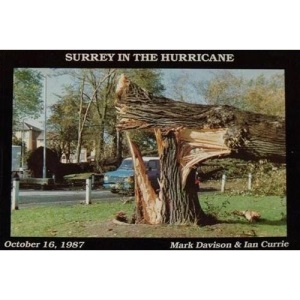 Surrey in the Hurricane: Great Storm of October 16th 1987 1987 (Great Storm of 1987 in Southern England)