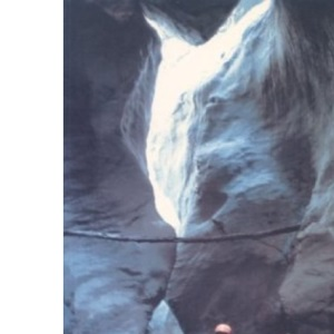 White Water Europe: A Kayaking and Rafting Guide to the Classic Runs in the South Alps v. 2