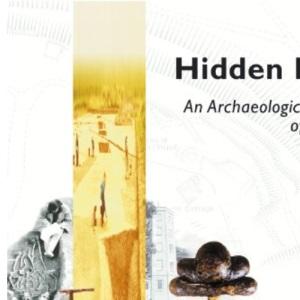 Hidden Depths: An Archaeological Exploration of Surrey's Past
