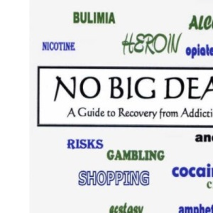 No Big Deal: A Guide to Recovery from Addictions