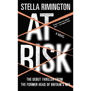 At Risk (Vintage Crime/Black Lizard)