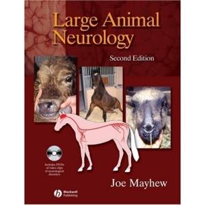 Large Animal Neurology