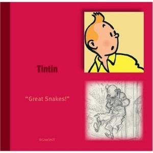 Tintin (Tintin Character)