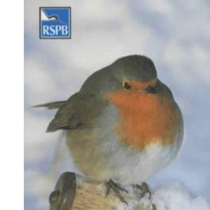 Pocket Birdfeeder Guide (RSPB)