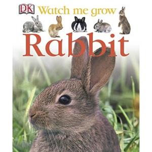 Rabbit (Watch Me Grow)