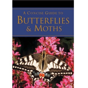A Concise Guide to Butterflies (Pocket Guides)