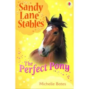 Perfect Pony (Sandy Lane Stables)