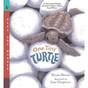 One Tiny Turtle: Nature Storybooks Book and CD set
