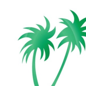 The Promised Land: A Guide to Positive Thinking for Sufferers of Stress, Anxiety, and Depression