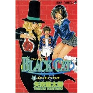 Black Cat: v. 3 (Black Cat (Viz))