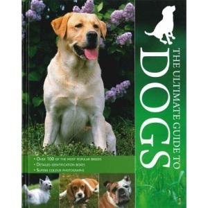 Encyclopedia - Dogs