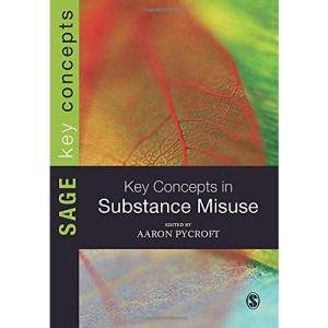 Key Concepts in Substance Misuse (SAGE Key Concepts series)