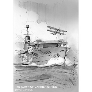 The Dawn of Carrier Strike: The World of Lieutenant W P Lucy DSO RN