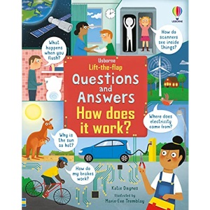 Lift-the-Flap Questions & Answers How Does it Work? (Lift-the-Flap Questions & Answers)