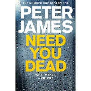 Need You Dead: 13 (Roy Grace)