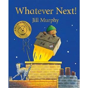 Whatever Next! (A Bear Family Book)