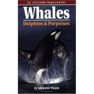Whales, Dolphins and Porpoises (Altitude Superguides)