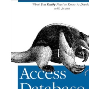 Access Database Design and Programming (Nutshell Handbook)